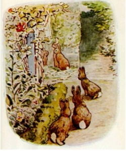 B. Potter Flopsy Rabbits 1