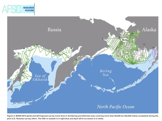 Seal Range, The Alaska Fisheries Science Center (AFSC) Quarterly Report is produced by the Center's Communications Program, nature of the findings provisional/study incomplete