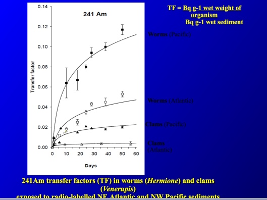 Fowler, ppt ca 2012, Americium uptake worms and clams - Pacific Atlantic