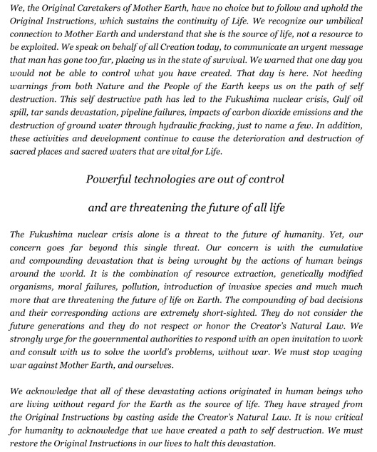 Council Statement Caretakers of Mother Earth p. 2