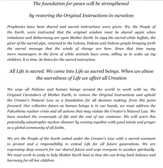 Council Statement Caretakers of Mother Earth p. 4