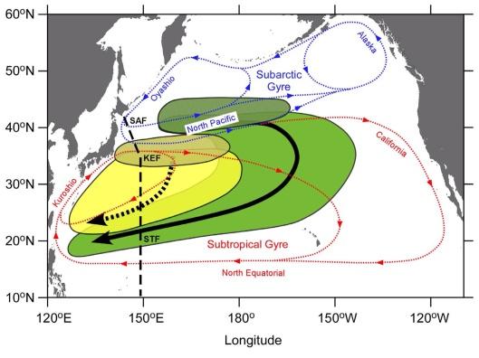Southward spreading of the Fukushima-derived radiocesium across the Kuroshio Extension in the North Pacific by Yuichiro Kumamoto1, Michio Aoyama, et. al.  2014 map