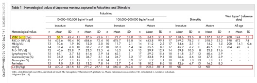 Fukushima Monkey Hematology in Low blood cell counts in wild Japanese monkeys after the Fukushima Daiichi nuclear disaster  Kazuhiko Ochiai et. al., 2014
