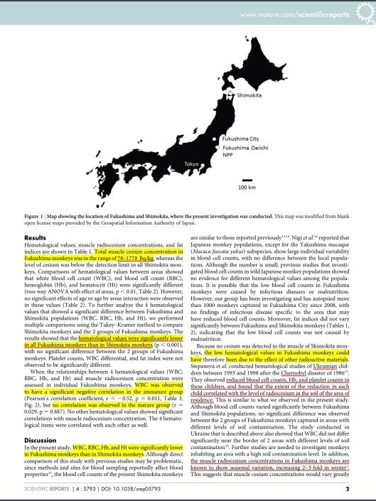 Low blood cell counts in wild Japanese monkeys after the Fukushima Daiichi nuclear disaster  Kazuhiko Ochiai1, Shin-ichi Hayama1, Sachie Nakiri1, Setsuko Nakanishi2, Naomi Ishii1, Taiki Uno1, Takuya Kato1, Fumiharu Konno3, Yoshi Kawamoto4, Shuichi Tsuchida1 & Toshinori Omi1 http://www.nature.com/srep/2014/140724/srep05793/pdf/srep05793.pdf, p. 2