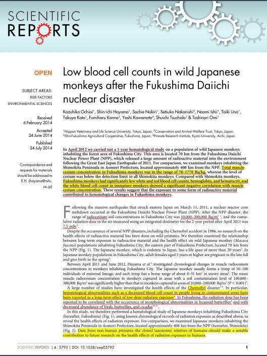 Low blood cell counts in wild Japanese monkeys after the Fukushima Daiichi nuclear disaster  Kazuhiko Ochiai1, Shin-ichi Hayama1, Sachie Nakiri1, Setsuko Nakanishi2, Naomi Ishii1, Taiki Uno1, Takuya Kato1, Fumiharu Konno3, Yoshi Kawamoto4, Shuichi Tsuchida1 & Toshinori Omi1 http://www.nature.com/srep/2014/140724/srep05793/pdf/srep05793.pdf p. 1