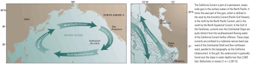 Circular 1198 USGS Pacific Currents