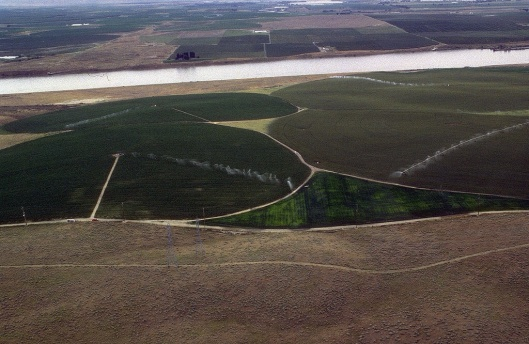 Potato fields under irrigation with center-pivot sprinklers in Idaho, USA Army Corps of Engineers