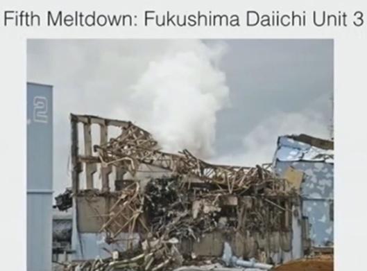 Arnie Gundersen Wave Conference Fairewinds Fuku meltdown 3