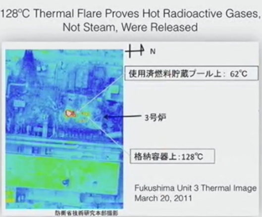 Arnie Gundersen Wave Conference Fairewinds Thermal Flare Fukushima