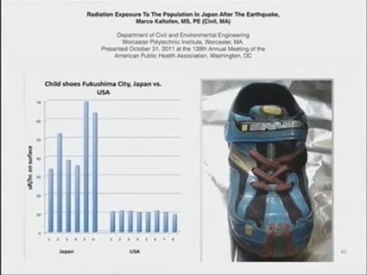 Arnie Gundersen Wave Conference Fairewinds Fuku shoe contamination