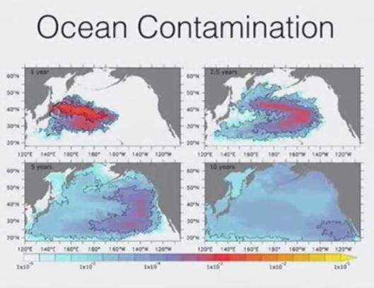 Arnie Gundersen Wave Conference Fairewinds ocean contamination