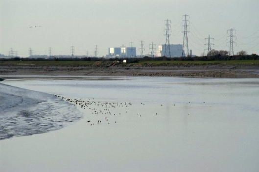 River Parrett. Looking down stream with Hinkley Power Stations in the background, 10 February 2006, From geograph.org.uk, by Adrian and Janet Quantock, CC-BY-SA 2.0 via wikipedia