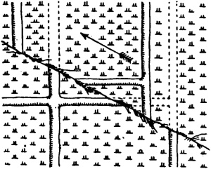 Fig. 48.—Displacement of Field Divisions by the Fault near Nishi-Katabira. (Koto.)
