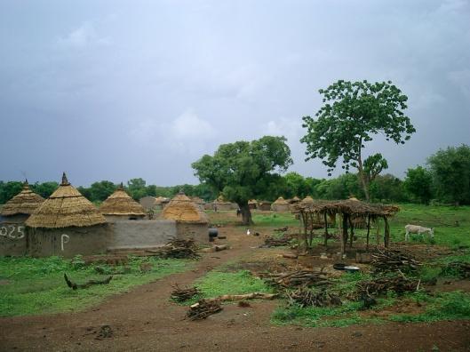 Lalgaye village in burkina faso, 2004, CC-SA-3.0 by SoKr http://en.wikipedia.org/wiki/Wildlife_of_Burkina_Faso