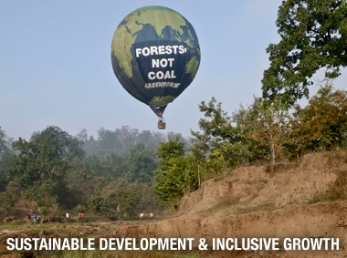 Greenpeace Forests Not Coal