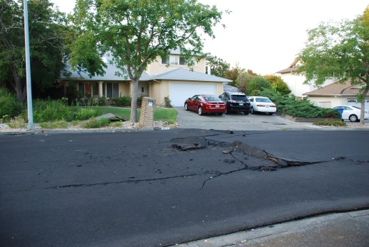 Title: 2014 South Napa CA M6 Earthquake - August 24 Description:  Pavement buckling and tented sidewalk resulting from ~14 cm of compression on Sandybrook Ln., north end of main rupture.  Location: Napa, CA, USA, Date Taken: 08/24/2014 Photographer: Thomas Holzer, USGS