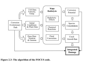 FOCUS model of nuclear reactor damage from A Study for Modeling Electrochemistry in Light Water Reactors, by Han Sang Kim, 2007