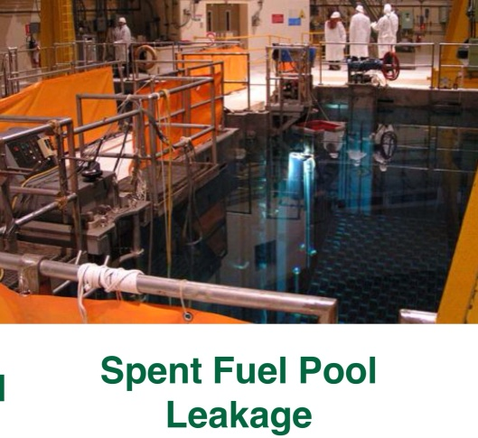 Naus, 2012, p. 18 Spent fuel pool leakage (b)