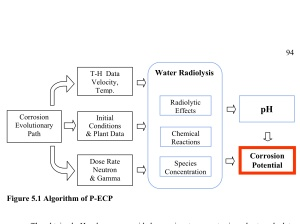 A Study for Modeling Electrochemistry in Light Water Reactors, by Han Sang Kim, 2007, P-ECP model