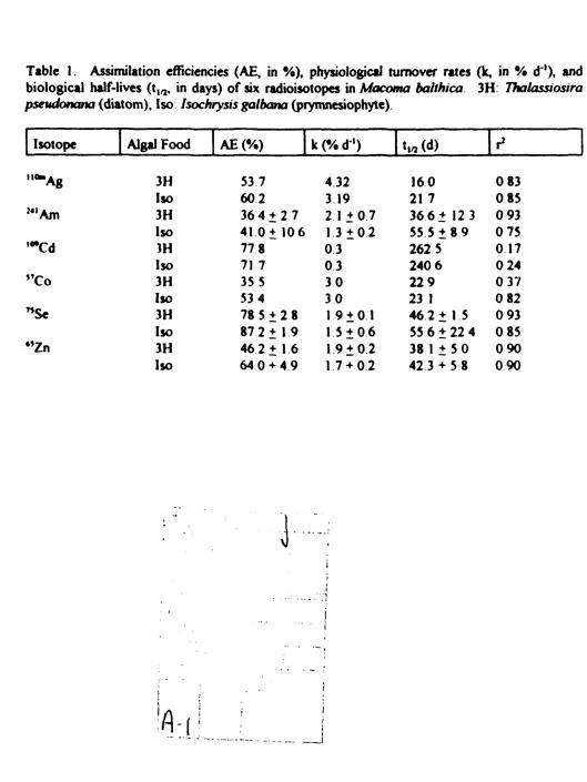 GRANT NUMBER: N00014-93-1-1287, p. 3