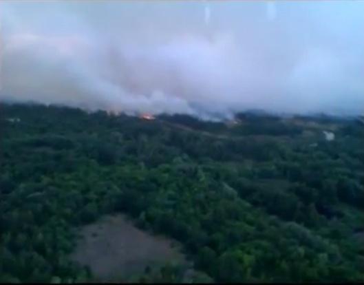 Chernobyl fire ca beginning July 2015 from Ukraine gov vid