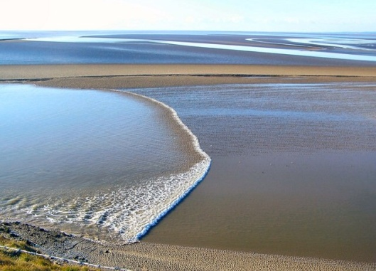 Tidal Bore   Attribution: Arnold Price Source	From geograph.org.uk CC-BY-SA