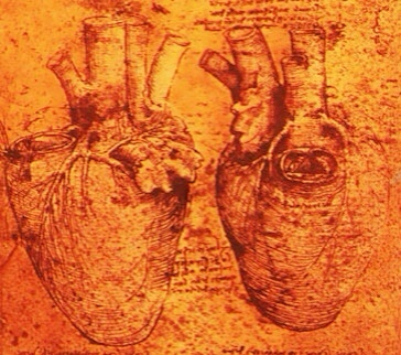 Leonardo DaVinci heart drawing red