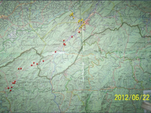 Buzz Davies Map Erwin area 2012