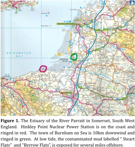 Figure 1. The Estuary of the River Parratt in Somerset, South West England.  Hinkley Point Nuclear Power Station is on the coast and ringed in red.  Burnham on Sea is 10km downwind and ringed in green., C. Busby, Sept 2015, Creative Commons