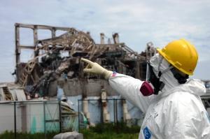 Copyright: IAEA Imagebank Photo Credit: Greg Webb / IAEA pointing to pic of melted reactor