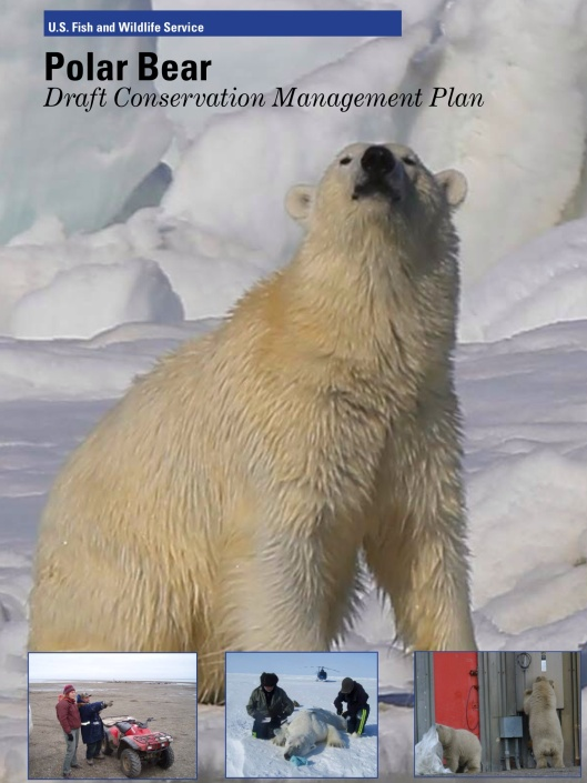 USFWS Polar Bear Plan Cover