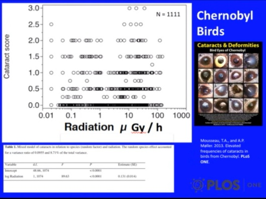 Biological Consequences of Nuclear Disasters: From Chernobyl to Fukushima, LOC-Mousseau Bird Cataract Score