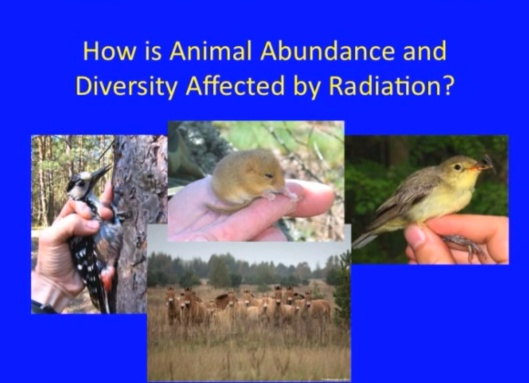 Biological Consequences of Nuclear Disasters: From Chernobyl to Fukushima, LOC-Mousseau  How is Animal Abundance Diversity affected by radiation