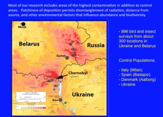 Biological Consequences of Nuclear Disasters: From Chernobyl to Fukushima, LOC-Mousseau Chernobyl zone Belarus Russia Ukraine