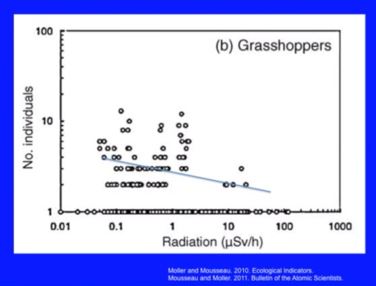 Biological Consequences of Nuclear Disasters: From Chernobyl to Fukushima, LOC-Mousseau Grasshoppers decline radiation