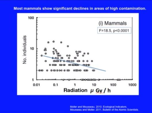 mammals significant decline