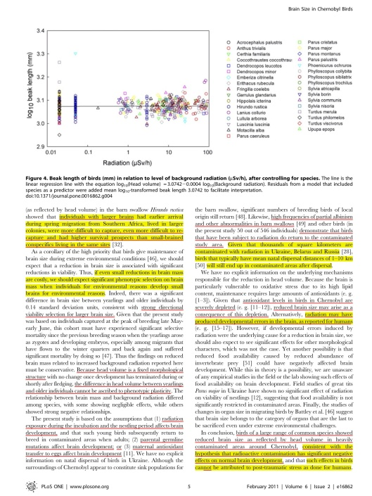 Chernobyl Birds Have Smaller Brains, p. 5