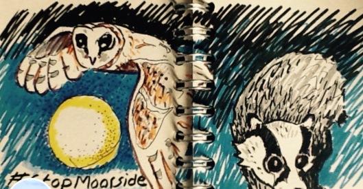 Stop Moorside owl  Marianne Birkby