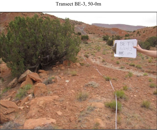 BLM-EF Attachment F Vegetation and Soil Survey