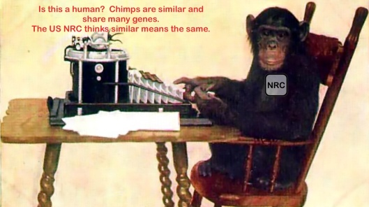 Chimps and humans are similar but not same