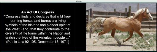1971 Public law Wild Horses