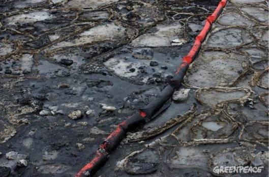 Greenpeace Oil spill in ice