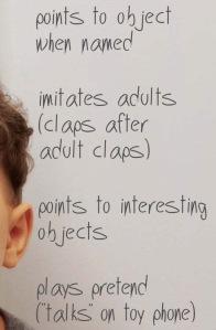 Age 2 behavior