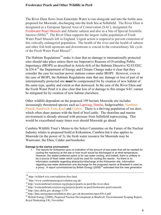 "Moorside, ""Biggest New Nuclear Development in Europe"", Myth vs. Reality RAFL, p. 6"