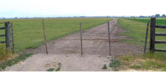 A wire gate, made of barbed wire, common on western cattle ranches