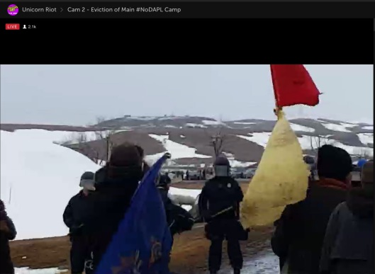Unicorn Riot at Standing Rock livestream screen shot
