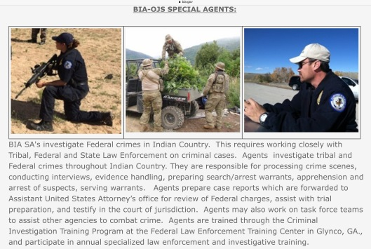 Bureau of Indian Affairs BIA Special Agent