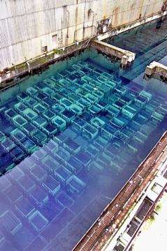 SellafieldPondajpg copy